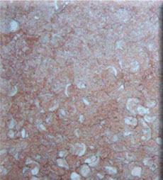 PINK FOSSIL